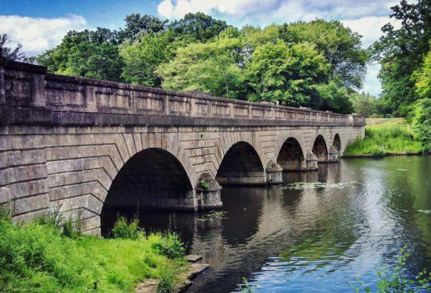 Dental bridge blog