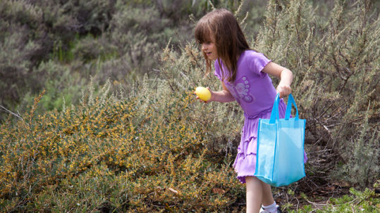 easter egg hunt in prescott, arizona