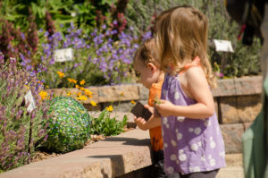 Master Gardeners' Plant and Yard Sale in Prescott